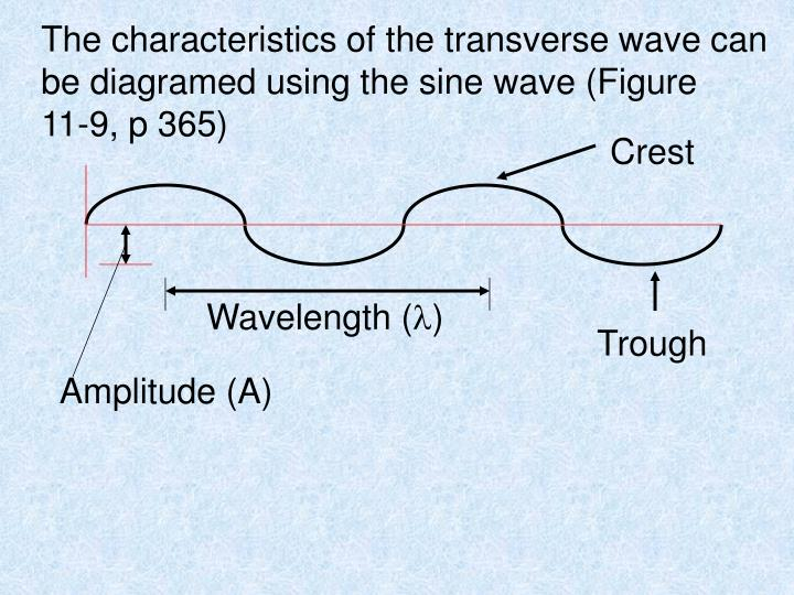 The characteristics of the transverse wave can be diagramed using the sine wave (Figure   11-9, p 365)