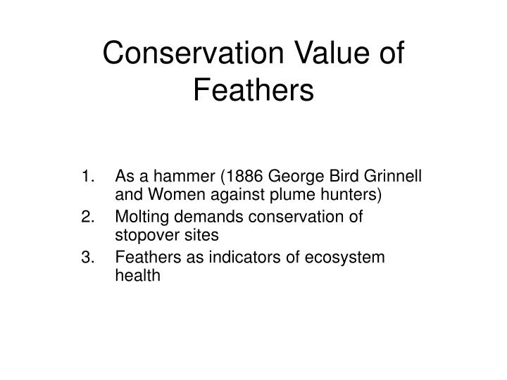 Conservation Value of Feathers