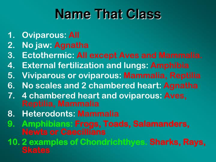 Name That Class