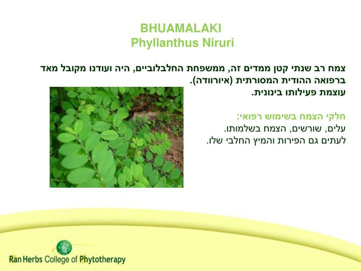 BHUAMALAKI