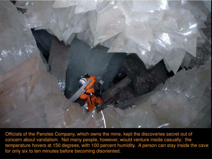 Officials of the Penoles Company, which owns the mine, kept the discoveries secret out of concern about vandalism.  Not many people, however, would venture inside casually:  the temperature hovers at 150 degrees, with 100 percent humidity.  A person can stay inside the cave for only six to ten minutes before becoming disoriented.