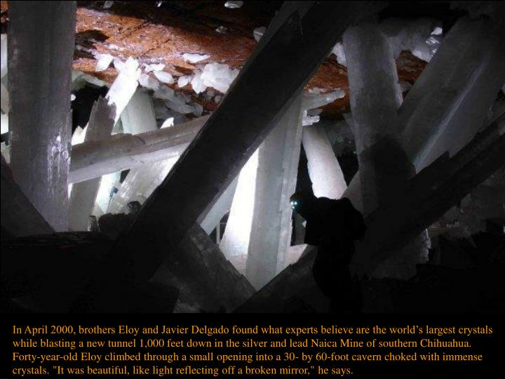 "In April 2000, brothers Eloy and Javier Delgado found what experts believe are the world's largest crystals while blasting a new tunnel 1,000 feet down in the silver and lead Naica Mine of southern Chihuahua. Forty-year-old Eloy climbed through a small opening into a 30- by 60-foot cavern choked with immense crystals. ""It was beautiful, like light reflecting off a broken mirror,"" he says."