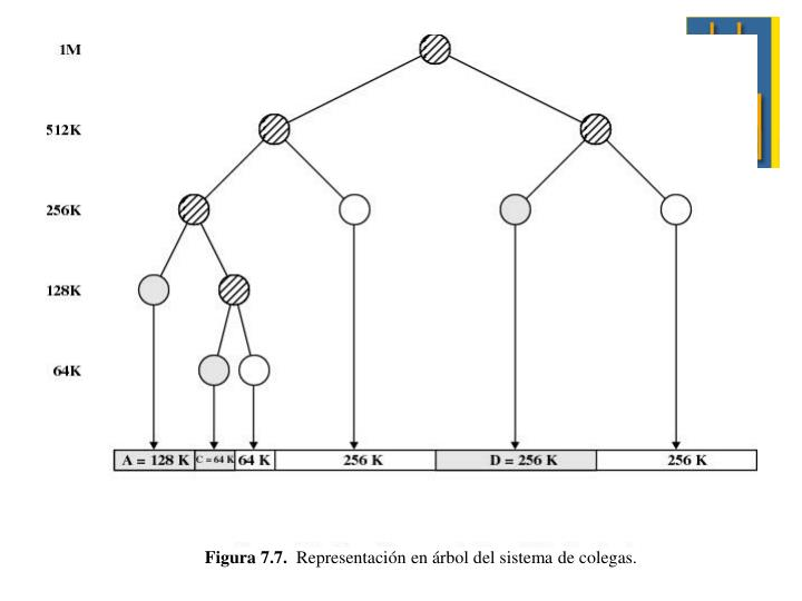 Figura 7.7.