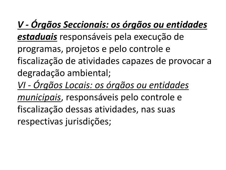 V - Órgãos Seccionais: os órgãos ou entidades estaduais