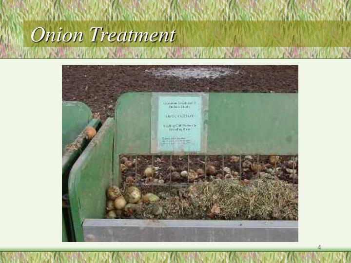 Onion Treatment