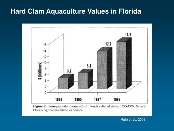 Hard Clam Aquaculture Values in Florida