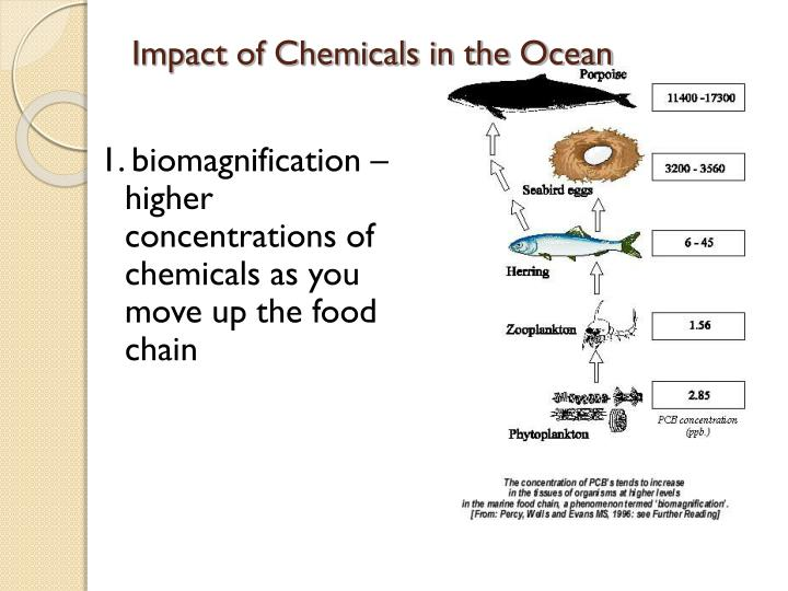 Impact of Chemicals in the Ocean