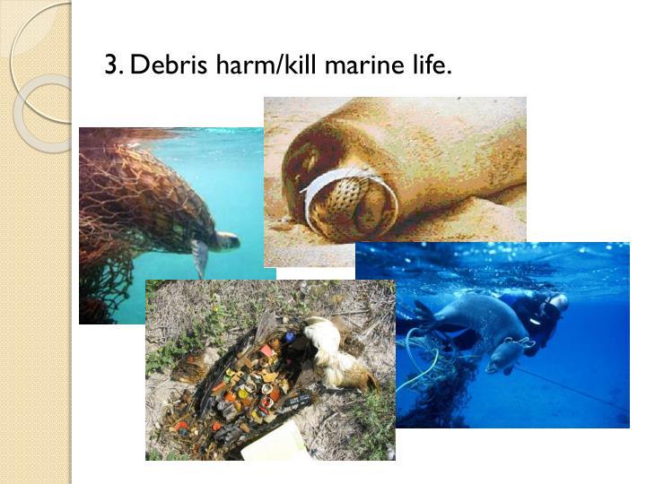 3. Debris harm/kill marine life.