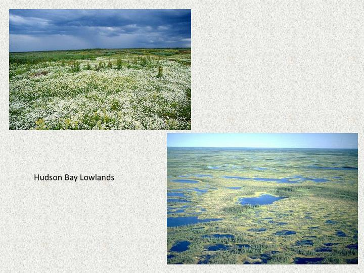 Hudson Bay Lowlands