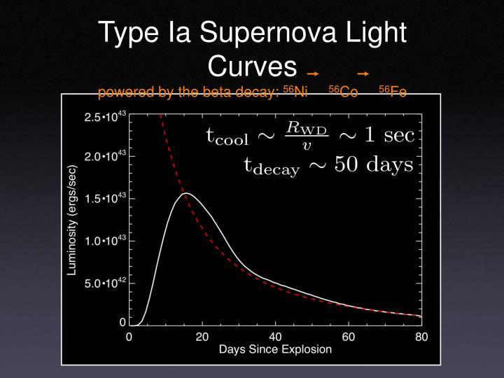 Type Ia Supernova Light Curves