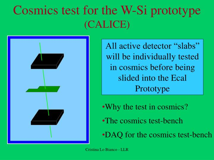 cosmics test for the w si prototype calice