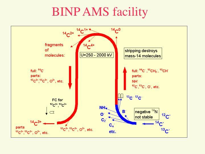 BINP AMS facility