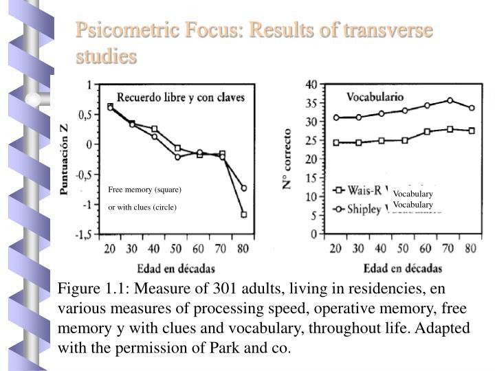 Psicometric Focus: Results of transverse studies