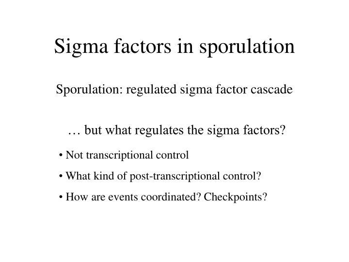 Sigma factors in sporulation