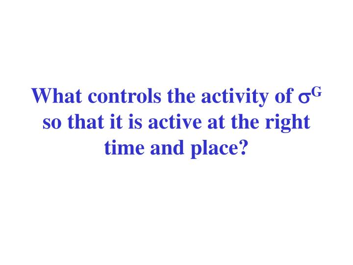 What controls the activity of