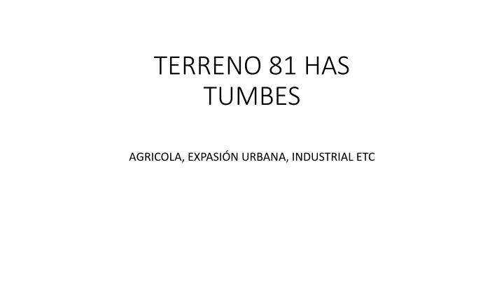 Terreno 81 has tumbes