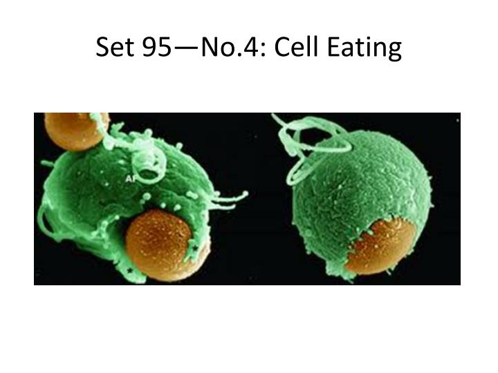 Set 95—No.4: Cell Eating