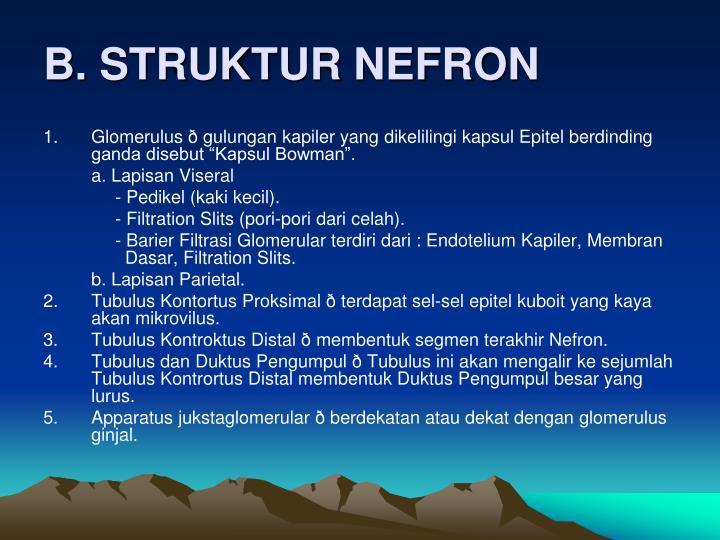 B. STRUKTUR NEFRON