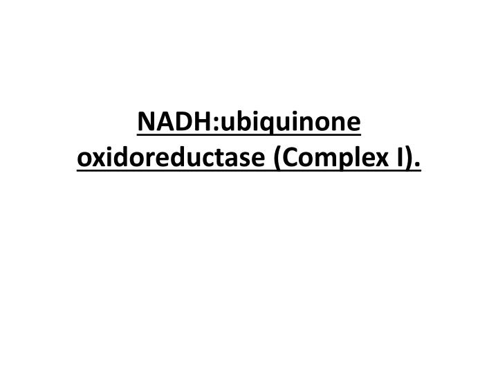 NADH:ubiquinone