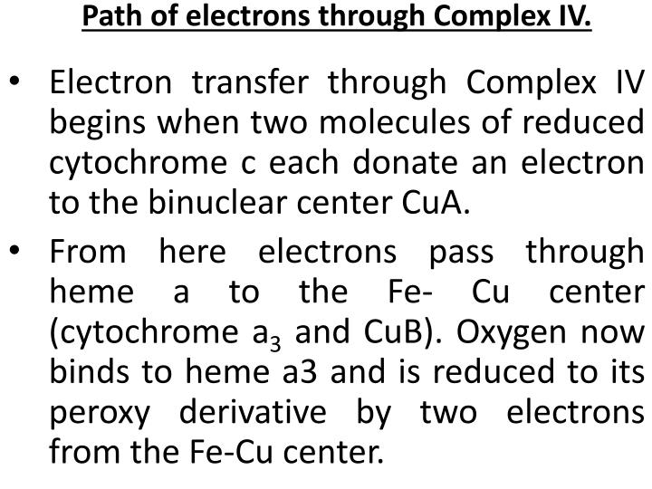 Path of electrons through Complex IV.