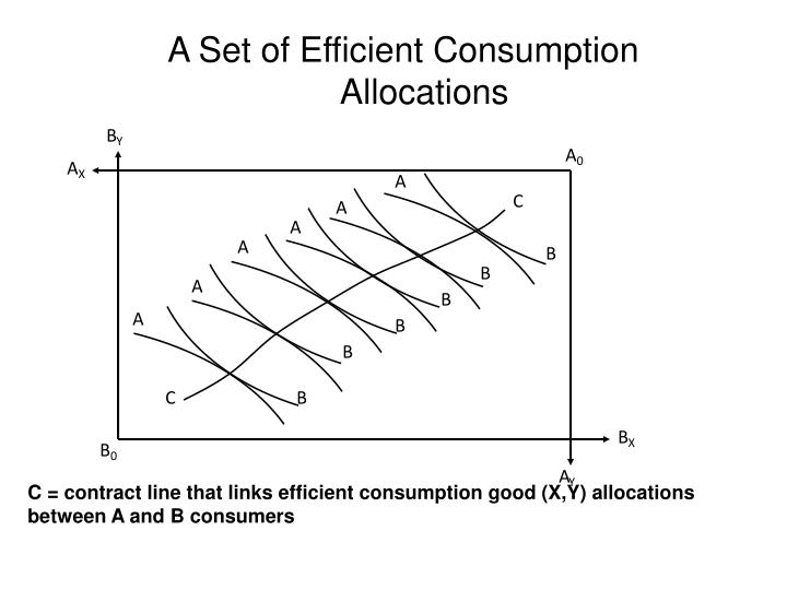 A Set of Efficient Consumption Allocation