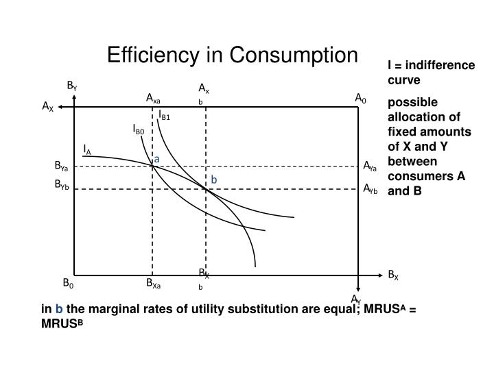 Efficiency in Consumption