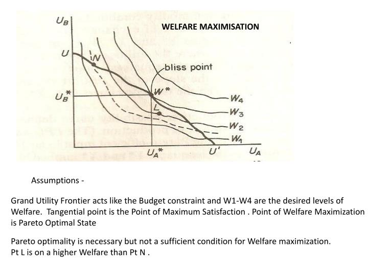 WELFARE MAXIMISATION