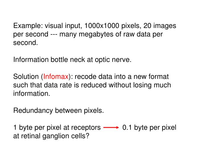 Example: visual input, 1000x1000 pixels, 20 images per second --- many megabytes of raw data per second.