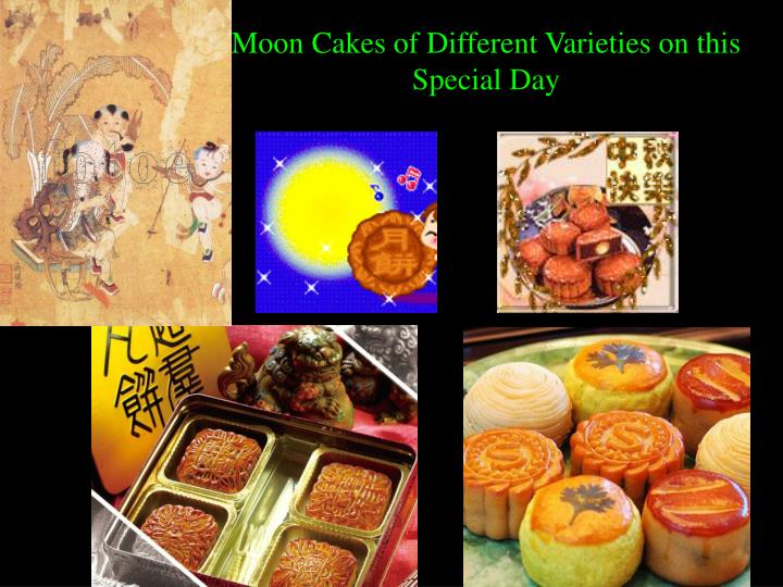 Moon Cakes of Different Varieties on this Special Day
