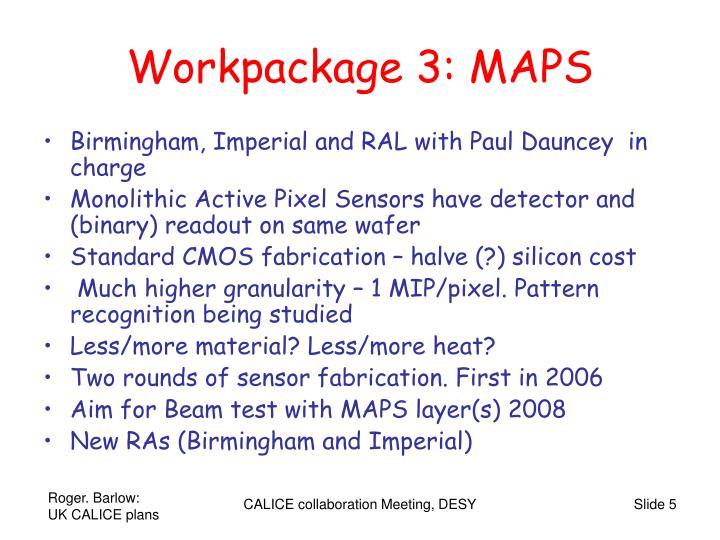 Workpackage 3: MAPS