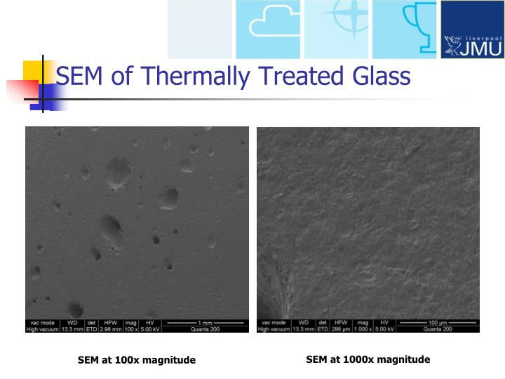 SEM of Thermally Treated Glass