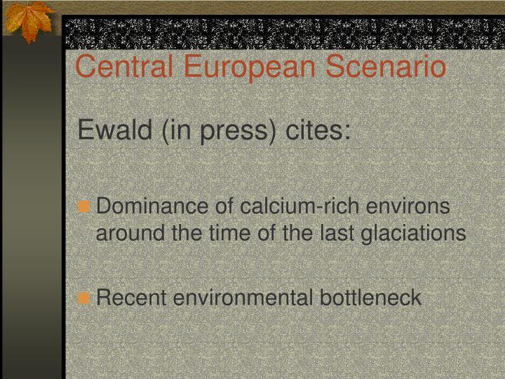 Central European Scenario