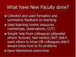 what have new faculty done