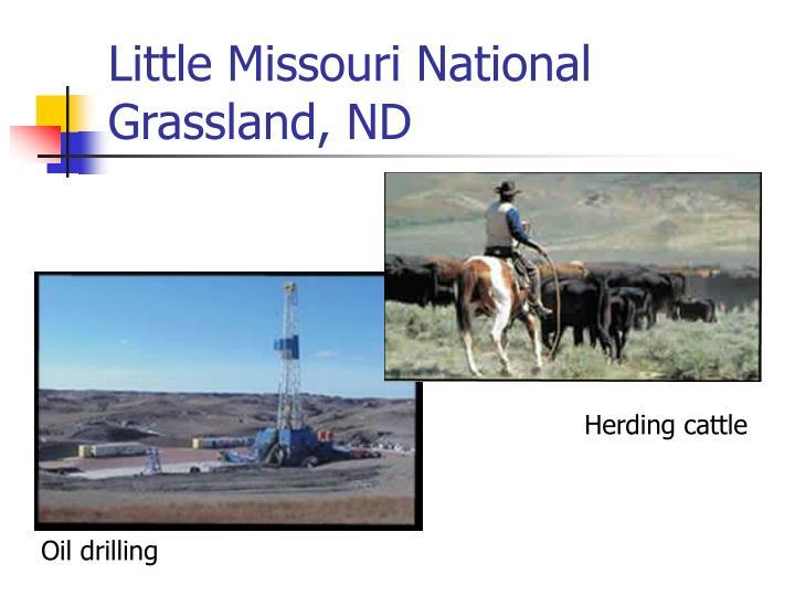 Little Missouri National Grassland, ND