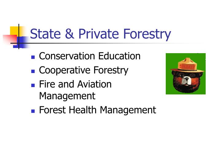 State & Private Forestry