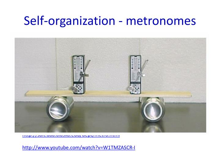 Self-organization - metronomes