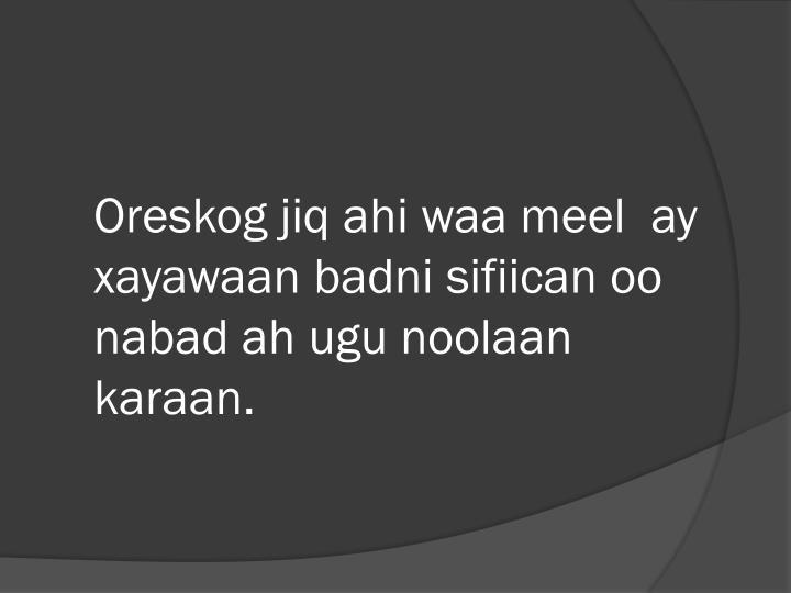 Oreskog jiq ahi waa meel  ay xayawaan badni sifiican oo nabad ah ugu noolaan karaan.