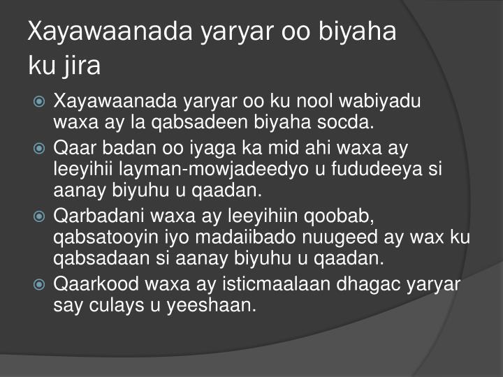 Xayawaanada