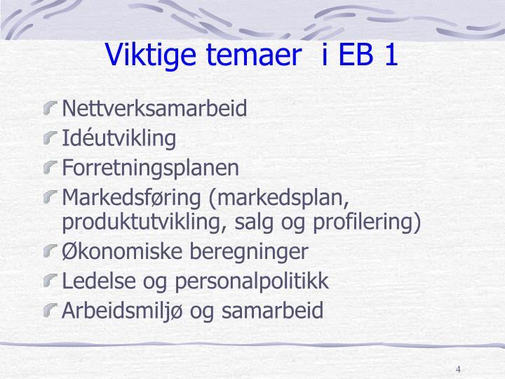 Viktige temaer  i EB 1