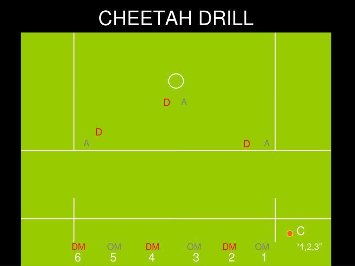 CHEETAH DRILL