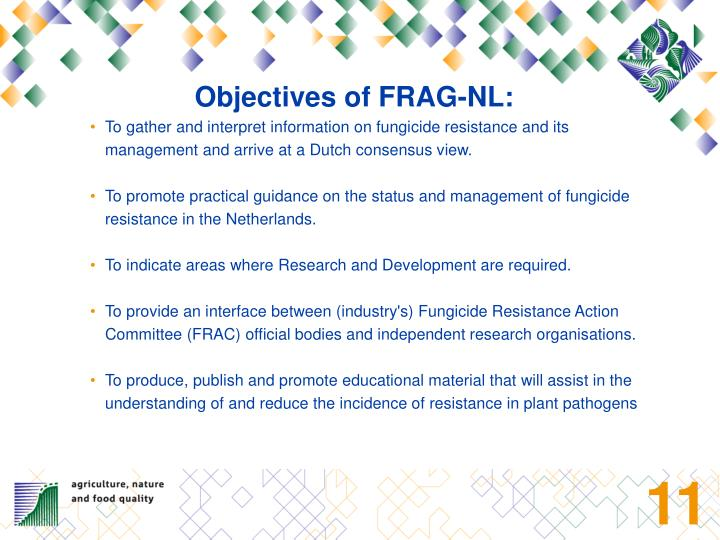 Objectives of FRAG-NL:
