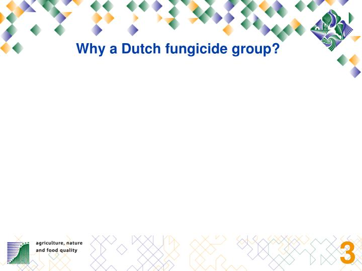 Why a Dutch fungicide group?