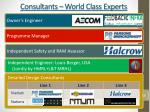 consultants world class experts