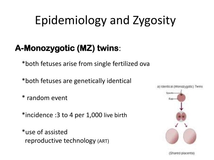 Epidemiology and Zygosity