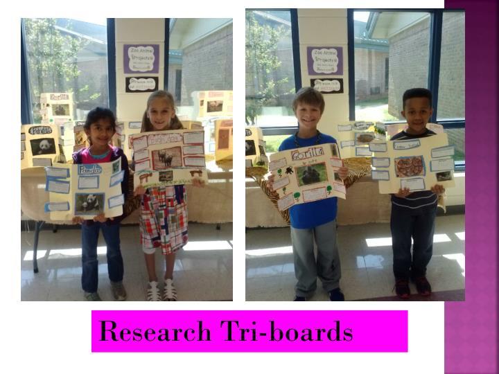Research Tri-boards
