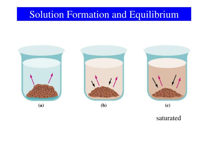 Solution Formation and Equilibrium
