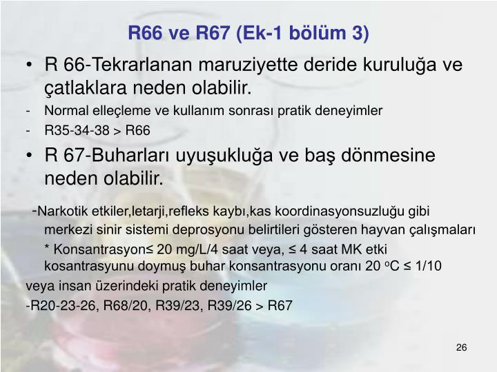 R66 ve R67 (Ek-1 bölüm 3)