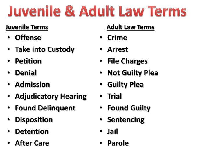Juvenile & Adult Law Terms