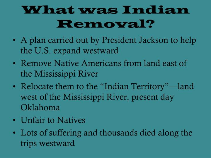 What was Indian Removal?