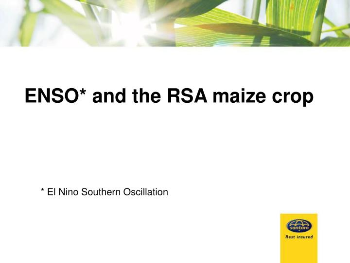 ENSO* and the RSA maize crop